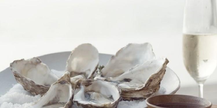 Oyster beach copertina